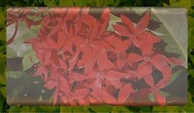 Abstrakcjonistycznej natury tła niedźwięczny szablon dla strony internetowej, abstrakcjonistyczny ewidencyjny grafika szablonu pr zdjęcie royalty free