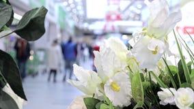 Abstrakcjonistycznej plamy centrum handlowego i handlu detalicznego sklepu piękny nowożytny luksusowy wnętrze dla tła, ludzie cho zdjęcie wideo