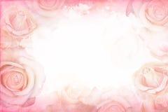 Abstrakcjonistycznej romantycznej róży horyzontalny tło Delikatnego projekta szablon dla kartka z pozdrowieniami i zaproszeń ilustracji
