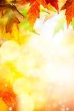 abstrakcjonistycznej sztuki jesień tło Zdjęcie Stock