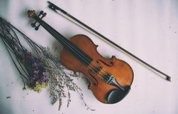 Abstrakcjonistycznej sztuki projekta tło klasyczny skrzypce i łęk stawiający obok wysuszonego kwiatu bukieta na tle, obraz royalty free