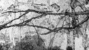 Abstrakcjonistycznej tekstury psychodeliczny czarny i biały Obraz Royalty Free