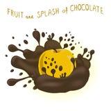 Abstrakcjonistycznej wektorowej ikony ilustracyjny logo dla całego dojrzałego owocowego jabłka Zdjęcia Royalty Free