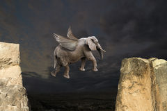 Abstrakcjonistycznej zabawy Latający słoń z skrzydła pojęciem Obrazy Stock