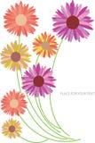 abstrakcjonistyczni backgroun koloru kwiatu silhoues Obraz Royalty Free