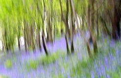 abstrakcjonistyczni bluebells Obrazy Stock
