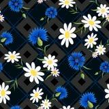 Abstrakcjonistyczni Cornflowers 2-01 Obrazy Royalty Free