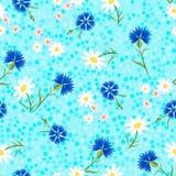 Abstrakcjonistyczni Cornflowers błękitny dots-01 Zdjęcia Stock