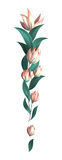 Abstrakcjonistyczni dekoracyjni kwiaty Fotografia Royalty Free