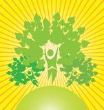 abstrakcjonistyczni drzewa Obraz Royalty Free