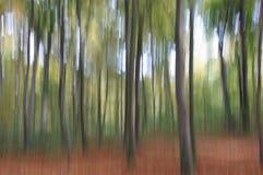 Abstrakcjonistyczni drzewa Zdjęcia Stock