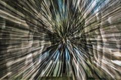 Abstrakcjonistyczni drzewa i niebo Zdjęcia Stock