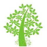 abstrakcjonistyczni eco liść sylwetki drzewa winogrady Zdjęcia Stock