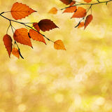 Abstrakcjonistyczni jesienni tła Zdjęcie Stock