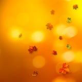 Abstrakcjonistyczni jesienni tła Obrazy Stock