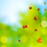 Abstrakcjonistyczni jesienni tła Fotografia Stock