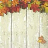 Abstrakcjonistyczni jesienni tła Zdjęcia Royalty Free