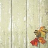 Abstrakcjonistyczni jesienni tła Zdjęcia Stock