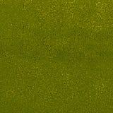 Abstrakcjonistyczni kolorów punkty na zielonym tle Piasek textured szorstka powierzchnia Dobry dla grungy spojrzeń, tło, tekstury zdjęcie royalty free