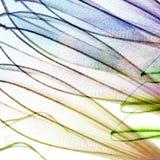 Abstrakcjonistyczni kwiatów płatki obrazy stock