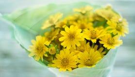 Abstrakcjonistyczni kwiatów płatki w zieleni i kolorze żółtym Obrazy Stock