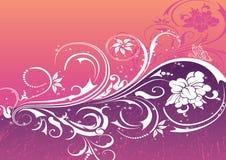 abstrakcjonistyczni kwiaty Zdjęcia Stock
