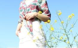 abstrakcjonistyczni motyle okrążają kolorowego projekta czuciowego kwiatów lato Obraz Stock