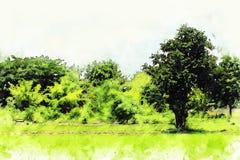 Abstrakcjonistyczni Piękni Rice pola i drzewnej akwareli ilustracyjny obraz ilustracji