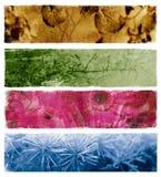 abstrakcjonistyczni sztandary cztery ilustracji