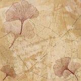 abstrakcjonistyczni tła ginkgo liść Obraz Royalty Free