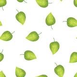 Abstrakcjonistyczni tło zieleni liście ilustracji