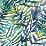 Abstrakcjonistyczni zebra lampasy ilustracja wektor