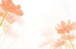 Abstrakcjonistyczny akwareli Dandelion Obrazy Stock