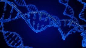 Abstrakcjonistyczny błękitny błyskotliwy DNA dwoisty helix z głębią pole Animacja DNA budowa od debrises nauka zbiory