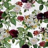 Abstrakcjonistyczny Bezszwowy elegancja wz?r z rocznika ogr?du kwiatami ilustracji