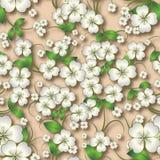 Abstrakcjonistyczny bezszwowy kwiecisty tło z wiosna ornamentem na beig Obraz Royalty Free