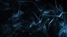 Abstrakcjonistyczny bielu dym na czarnym tle, dymny tło, błękita dymny tło zbiory wideo