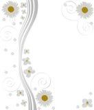 abstrakcjonistyczny chamomiles projekta kwiat ilustracja wektor