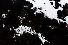 Abstrakcjonistyczny czarny i biały tło ilustracji