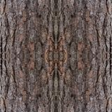 Abstrakcjonistyczny dekoracyjny korowaty tło kolorowy deseniowy bezszwowy Fotografia Stock