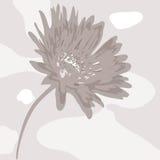 Abstrakcjonistyczny desaturated kwiat Obraz Stock