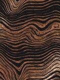 Abstrakcjonistyczny drewniany złoto wzoru tekstur tło Bezszwowa luksusowa drewniana tekstura, deskowa ręka rysująca grafika Zwart ilustracja wektor