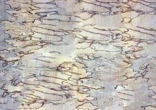 Abstrakcjonistyczny drewno stołu tekstury tło Obraz Royalty Free