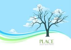 Abstrakcjonistyczny Drzewo i Niebieskiego Nieba Szeroki Tło Zdjęcie Stock
