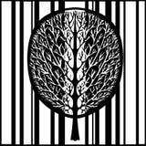 Abstrakcjonistyczny drzewo, wektorowa ilustracja, rocznik stylizował monochromatycznego rysunek Ozdobny drzewo z gałąź i korony u zdjęcia stock