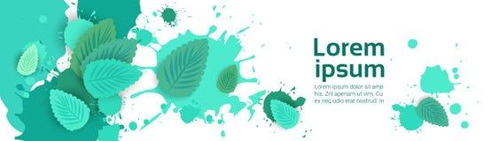 Abstrakcjonistyczny farby pluśnięcie I mennica liść Ustawiający Nad Białym tłem Dla kopia teksta I przestrzeni royalty ilustracja