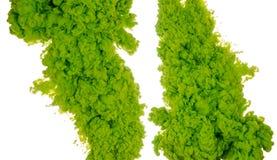 Abstrakcjonistyczny farby tła kolor zielony atramentu pluśnięcie w wodzie odizolowywającej na białym tle Zdjęcie Stock