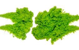 Abstrakcjonistyczny farby tła kolor zielony atramentu pluśnięcie w wodzie odizolowywającej na białym tle Zdjęcia Stock