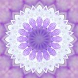 Abstrakcjonistyczny fiołkowy tła mandala flor wzór, dziki biel Obrazy Stock