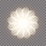 Abstrakcjonistyczny Fractal kwiat royalty ilustracja